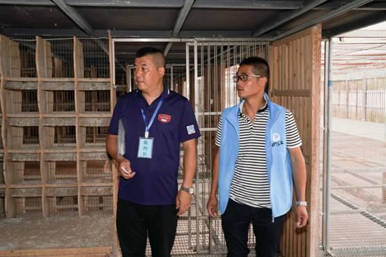 集鸽接近尾声,裁判长邹建平(左)带领裁判员进行查棚